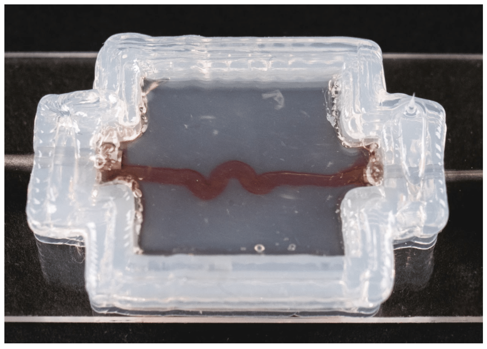 Bioprinting Vascularized Soft Tissue