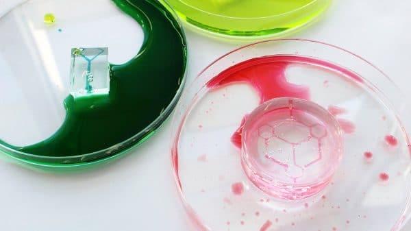 allevi organ on a chip organ-on-a-chip microfluidics PDMS carbohydrate glass volumetric inc vasculature