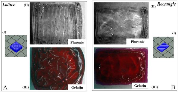 lattice vs sheet cardiac tissue 3d bioprinting allevi