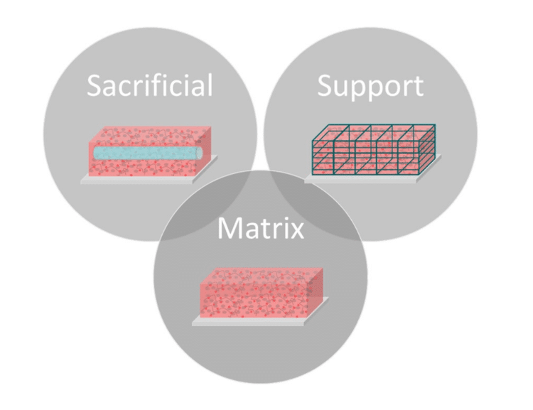 matrix bioink categories ECM