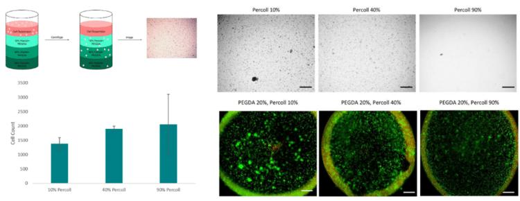 percoll pegda bioprinting