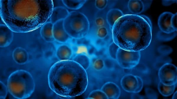 stem cells allevi bioprinting bioprinted