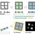 Allevi Author: Tohoku University Imaging 3D Hydrogels