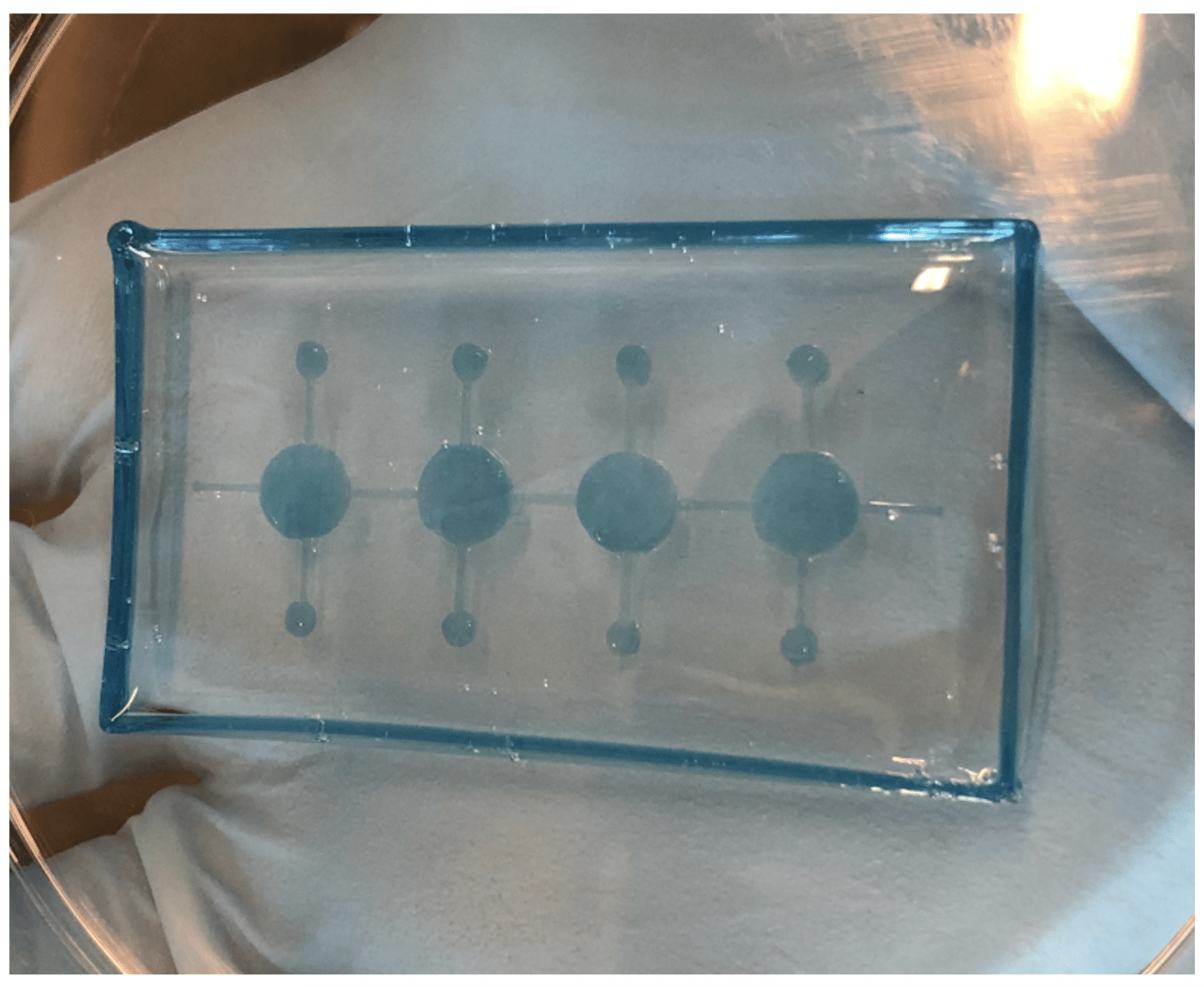 Organ-on-a-chip Bioprinting Using Carbohydrate Glass