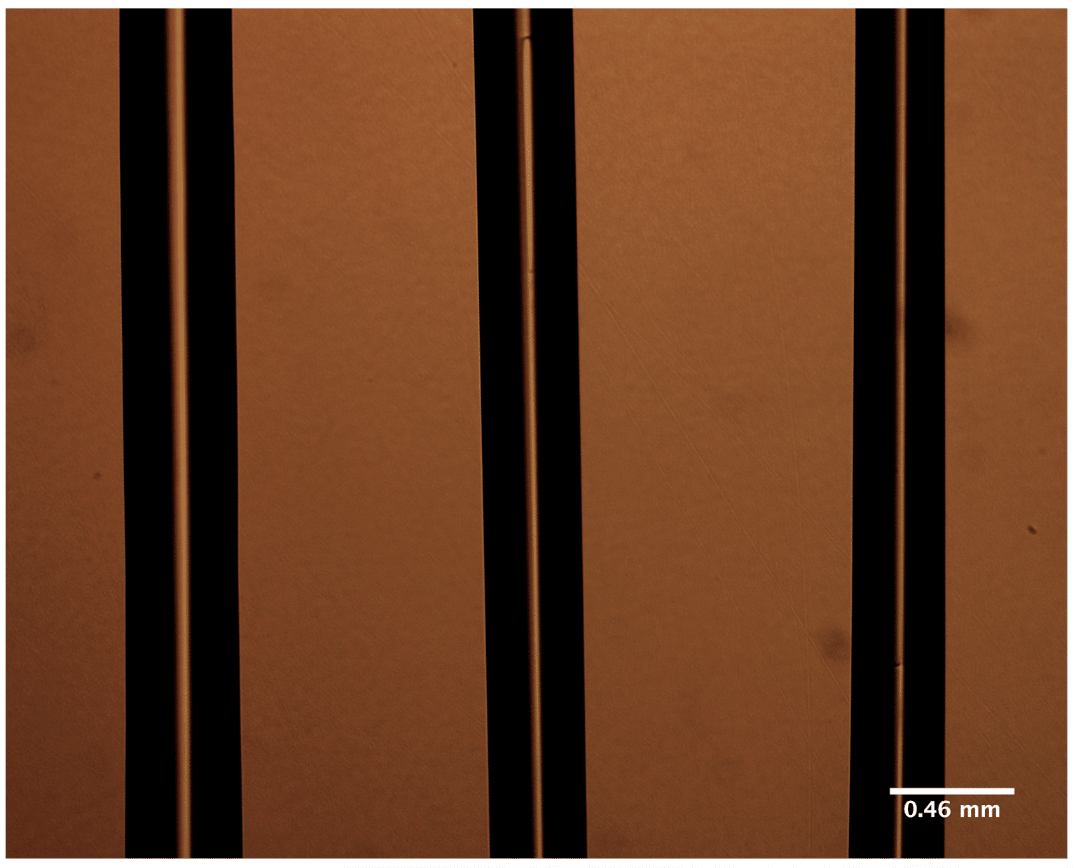 Bioprinting Hard Tissues Using PLGA