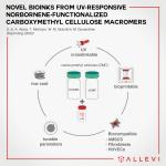 Allevi Authors Develop a Novel Cellulose-based Bioink