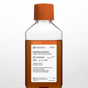 fetal bovine serum bioprinting