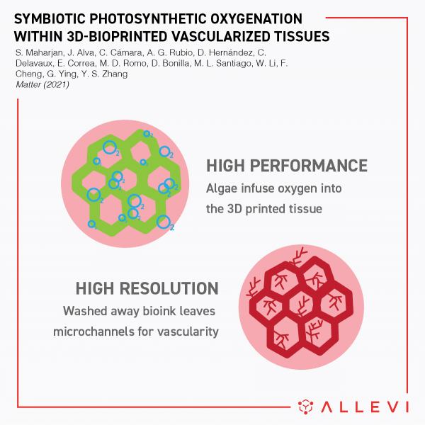 Symbiotic-Photosynthetic-Oxygenation-within-3D-Bioprinted-Vascularized-Tissues-allevi-author